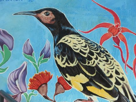 Mural For Sustainability - Regent Honeyeater. by TracieMacVean