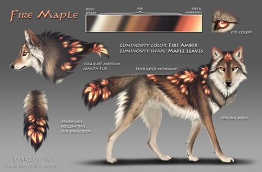 Fire Maple reference by areot