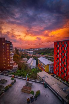 Sunset in Auckland by imladris517