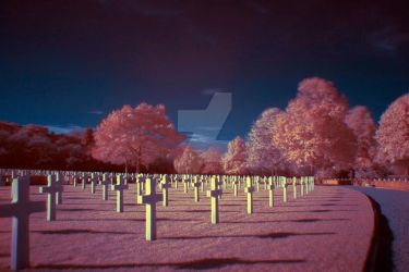 infrared crosses in the american cemetery by photographybypixie