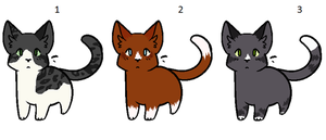 Warrior Cat Crack Ship Kittens ((ADOPTABLES)) by PoisonFate