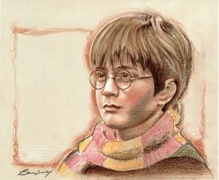 Harry Potter, Year One by BenCurtis