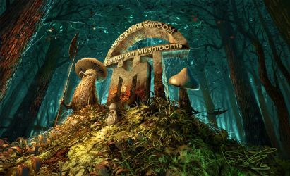 Infected mushroom - album cover by fear-sAs