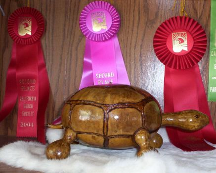 Travis the Gourd Tortoise by Thegourdhouse