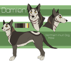 Damien reference sheet by ClimbToTheStars