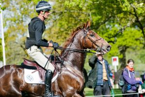 Mark Todd and Oloa at Badminton Horse Trials 2015 by WildgoosePhotography