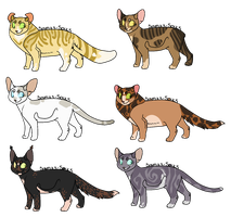 WindClan Adopts [CLOSED] by RibbonWren-Adopts