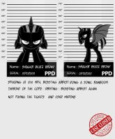 my little criminal record  Swager B. Brony by brony4all