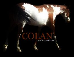 Colan by ONYX-BABE