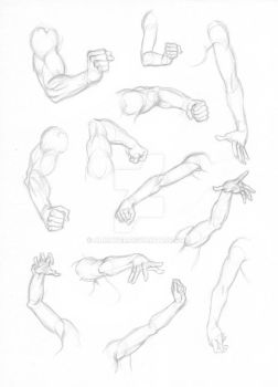 Arm and hand foreshortening studies by Almayer
