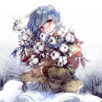 Winter cotton by hieihirai