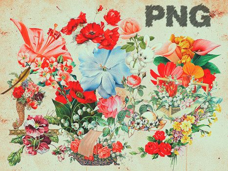 PNG_08 by tokiobsession