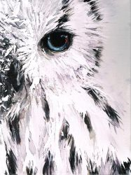 Snow Bark Owl by Meiphon