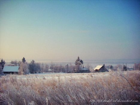 Winter by ad-dushk-ad
