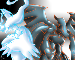 Reshiram and Zekrom by DYW14