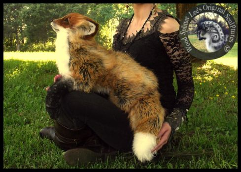 SOLD- HANDMADE LIFE SIZED Posable Fox by Wood-Splitter-Lee
