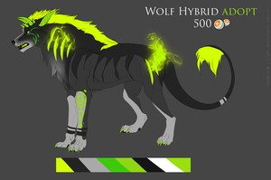 Wolf Hybrid Adopt - [CLOSED] by obscvritas