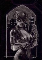 catwoman....in the night by LucaStrati