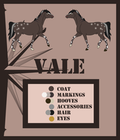 Vale - Reference Sheet by Crystal-Cinders