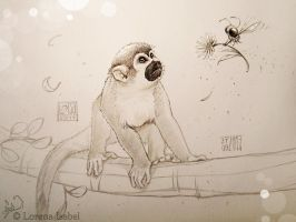 Monkey by Loisa