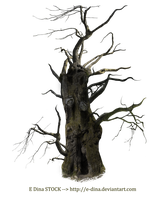 HQ PNG Stock Spooky Tree Mann by E-DinaPhotoArt