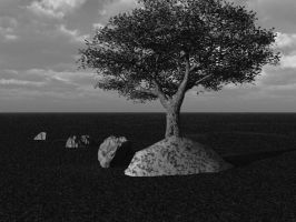 Tree and Stones by wiyaneth