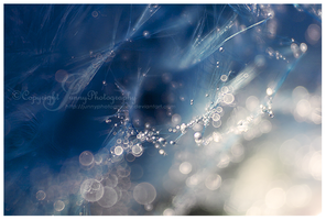 Abstract blue II by JunnyPhotography