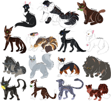 Every Thunderclan Medicine Cat Ever! by Draikinator