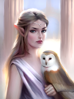 Elf and Owl by lenayre