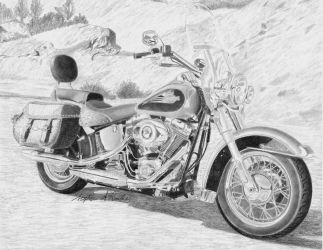 Harley-Davidson Heritage Softail by rooks10904