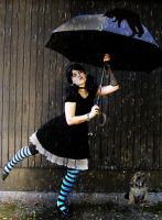 Raining Cats and Dogs by VisualPoetress