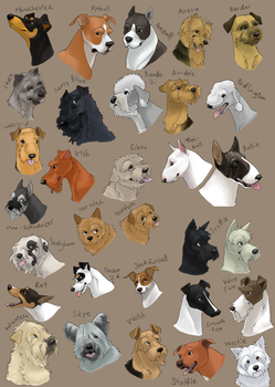 dog icons - TERRIER GROUP by swift-whippet