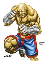 Sagat Muai Thai by stryfers