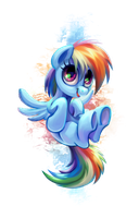 little Dashie by pondis-dant