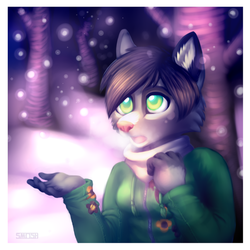 Snowflakes by Smushey