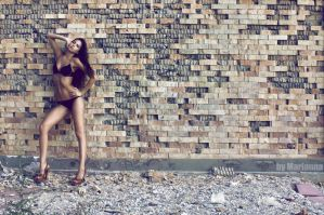 The wall by mariannaphotography