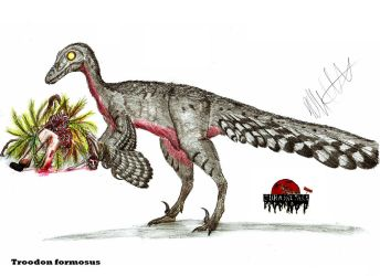 JP-Expanded Troodon by Teratophoneus