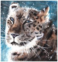 Leopard by Paintwick