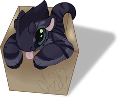 [JR-DTE ENTRY] If I fits by n3bby