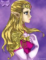 Princess Zelda Profile by CallistoHime