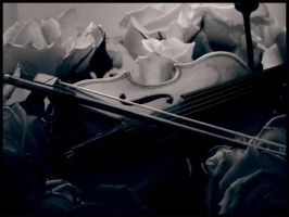 Violin by Dakann