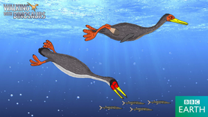 Walking with Dinosaurs: Hesperornis by TrefRex