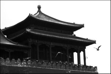Forbidden City - 9 by Cleonor
