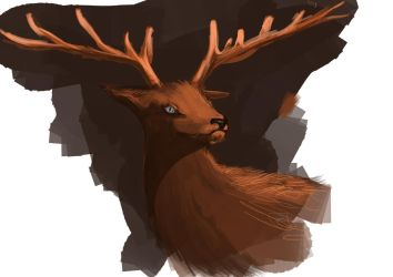 Practice 110: Red Deer by SaraCasen