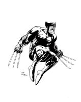 Wolverine in the air by billmeiggs