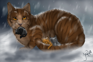 Leafpool's Quest by TheMoonfall