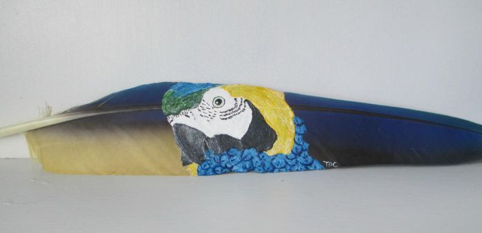 Blue and Gold Macaw Feather Painting by MadalynC