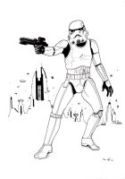 Stormtrooper by emalterre