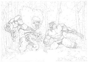 Wolverine VS Sabretooth Commission by mikebowden