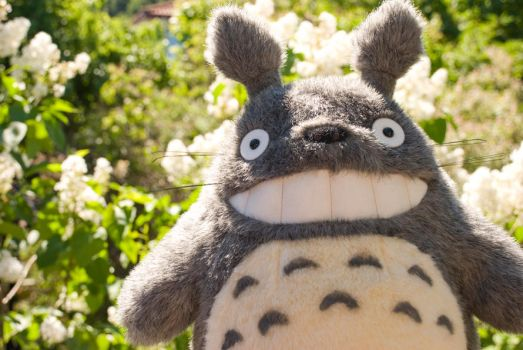 The adventures of Totoro by Nightly-Creature